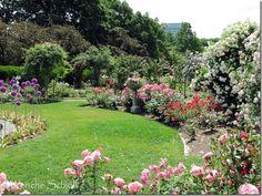 James P. Kelleher Rose Garden, Boston USA