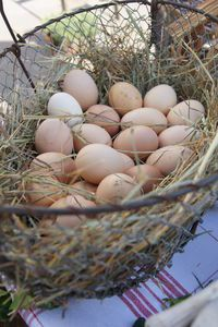 the best eggs come from your own barnyard :-) I love my fresh eggs!
