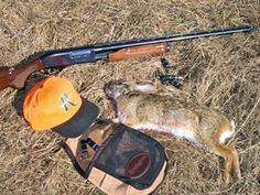 Rabbit hunting doesn't require a lot of gear