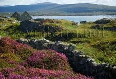 Connemara, this is home ; Store Image, Google Images, Places Ive Been, Stuff To Do, Ireland, Irish, To Go, Spaces, Search