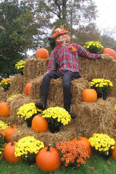 I would be absolutely thrilled to be able to *shoot* this in my yard! Harvest Decorations, Outside Decorations, Halloween Decorations, Outdoor Halloween, Fall Halloween, Happy Halloween, Fall Photo Booth, Fall Yard Decor, Diy Scarecrow