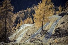 The long roads that you dream about, made better by warm autumn light. We love Ticino! Autumn Lights, Warm Autumn, Pro Cycling, Mountain S, Switzerland, Dreaming Of You, Country Roads