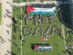 DECLARACIÓN de 100 líderes de la Comunidad Palestina Cristiana en la Tierra Santa a los Países Europeos: APOYEN la membrecía de PALESTINA en Naciones