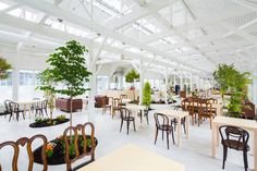 nadamoto yukiko architects plant garden inside tokachi hills - designboom | architecture