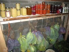 How To Store Fresh Vegetables For Months … Without A Refrigerator cellar How To Store Fresh Vegetables For Months … Without A Refrigerator - Off The Grid News 1000 Lifehacks, Off The Grid News, Root Cellar, Fresh Vegetables, Store Vegetables, Winter Vegetables, Root Veggies, Homestead Survival, Preserving Food
