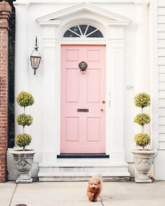 A fabulous 'Peach Mimosa' door in one of my favourite cities, Charleston 💗 That puppy is so adorable!! 💚💗💚 'Peach Mimosa' by BEHR Paints Color