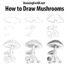 mushroom drawing draw drawings mushrooms simple hippie sketches cartoon sketching step sketch nature tekening drawn pencil paddenstoel line techniques doodle