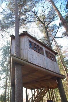 Into the woods! Kamperen, boshutten en boomhut in Drenthe...