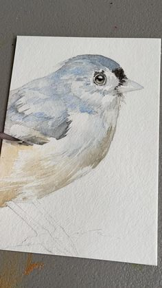 Want to learn how to paint birds in watercolor? Come take a class with me online! Follow the link to find my current schedule 🎨 Watercolor Art Lessons, Watercolor Video, Watercolor Painting Techniques, Watercolor Bird, Watercolor Paintings Of Animals, Watercolor Artwork, Watercolor Flowers Tutorial, Watercolour Tutorials, Folk Art Flowers