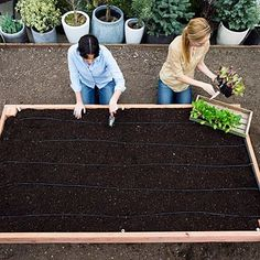 how to build a garden box on legs