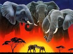 Image result for best elephant in the world