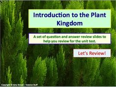 Biology chapter 3 the biosphere powerpoints and guided notes plants intro to plant kingdom review questionanswer powerpoint fandeluxe Gallery