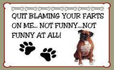 Boxer Dog Hilarious Farts