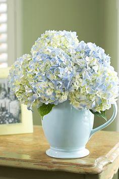 Arrange Your Own Bouquet With The Perfect Pitcher | Julie's Floral Blog