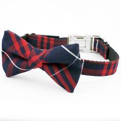 Tartan Bow Tie Dog Collar