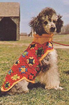 Free Crochet Dog Coat Pattern | Vtg Dog Sweater Crochet Pattern Instructions from 1969 | eBay