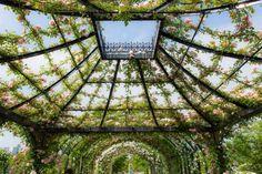 Yokohama English Garden Landscape | Garden Ideas | 1001 Gardens