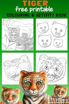 how to draw a tiger mask