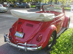 Own a vw bug convertible to drive around at the beach!