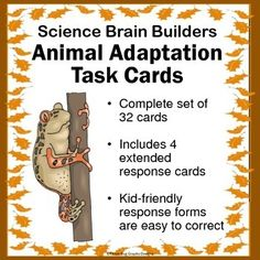 """This set of 32 """"Animal Adaptations Task Cards"""" gets kids thinking about how animals are adapted for their environment. Several cards match key concepts and vocabulary that are part of many states' curriculum standards."""