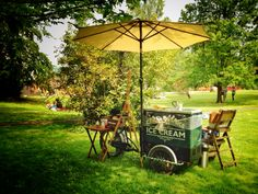"""Ruskin College Oxford on the lawn, for a community day. """"Yours is glorious country Honeychurch"""" Ice cream bicycle or ice cream bicycle wedding festival wedfest Bicycle Wedding, Festival Wedding, Special Events, Plum, Lawn, Oxford, Ice Cream, College, Community"""
