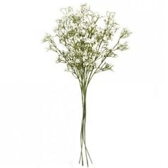 These artificial flowers are made from high quality materials and are ideal for use as wedding flowers. Each stem measures approximately tall (including the plastic stem). Gypsophila Flower, Artificial Flowers, Wedding Flowers, Plastic, Fake Flowers, Plastic Art, Wedding Ceremony Flowers, Art Flowers, Faux Flowers
