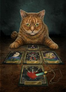 Tarot Cat says: I'm afraid the cards do not bode well for the dog.