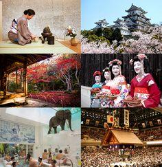 Japanese Culture: Tea Ceremony   Cherry Blossoms   Autumn Leaves   Geisha   Public Bath   Sumo   hotelsinasian.com