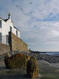 Just the mournful cry of seagulls, ST, MONANS,FIFE,SCOTLAND