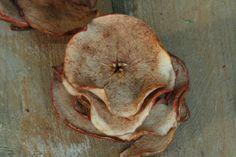 Appelchips maken met & voor je kids. Lekker, makkelijk, goedkoop en leuk om te doen. Ondertussen ruikt hele huis naar appeltaart. Recept > www.lekkeretenmetlinda.nl