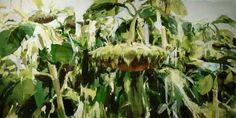 Alex Kanevsky (Russian, b. 1963), Sunflowers, 2012. Oil on canvas, 81.3cm x 152.4 cm.