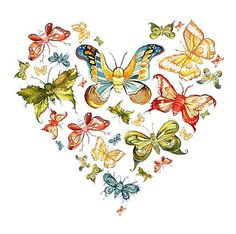 ...when you see a Butterfly think of me...