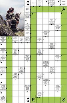Rejtvény: Házi kedvencek (Skandináv keresztrejtvény) - RejtvényBirodalom Rage, Worksheets, Vietnam, Humor, Montessori, Animals, Literacy Activities, Animales, Animaux
