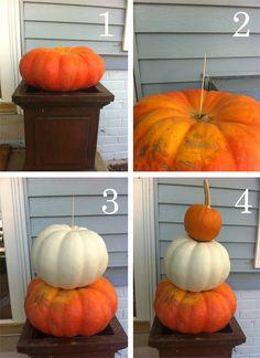 pumpkin topiary - Google Search