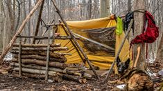 Overnight Bushcraft Camp with a dog, Long Fire, Wool Blanket, Fire Reflector