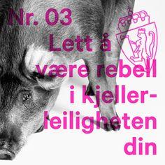 Saved on Spotify: Lett å være rebell i kjellerleiligheten din by Karpe Diem
