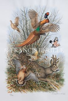 TABLEAU PEINTURE Chasse Faisan Chevreuil Bécasse - La Grande Traque Chien Springer, Deer Art, Rooster, Hunting, Drawings, Nature, Feather, Animal Paintings, Watercolor Drawing