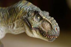 T Rex Jurassic Park, Jurassic Park Series, Jurassic World Dinosaurs, Jurassic Park World, Ancient Fish, Jurrassic Park, Dinosaur Pictures, Dinosaur Art, Dinosaur Sketch