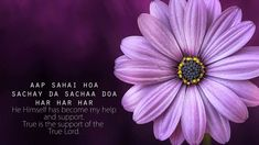 Divine Help Mantra | Aap Sahai Hoa | Simran | Chanting