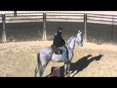 ▶ What to do when riding a horse that gets out of control. - (Don't let him get out of control in the first place!)