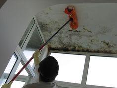 01_03_12_Clean_Blog_Imagem-1_Como-limpar-mofo-ou-bolor