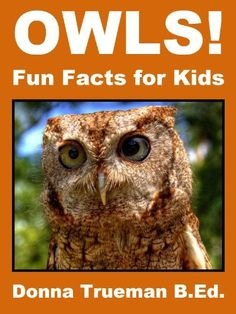 Owls! Fun Facts for Kids - Owl Facts & Picture Book About Species, Food, Sounds, Flight, Eyes, Babies & More by Donna Trueman B.Ed., http://www.amazon.com/dp/B00E0YM82A/ref=cm_sw_r_pi_dp_VhLdsb1JRW0EP
