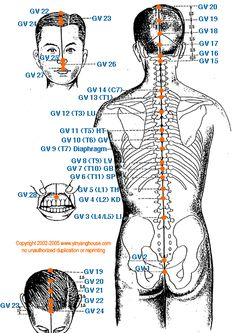 chinese acupressure meridian points | GV) Governing Vessel Meridian - Graphic
