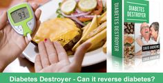 Diabetes Destroyer eBook – A guide to treat diabetes completely