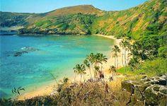 Hawaii (Volcanos. The USS Arizona. Beaches)
