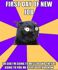 22 Best New Job Images Jokes Funny Images Hilarious