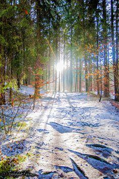 ...d'hiver !