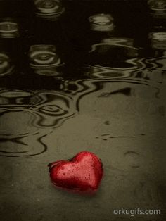 Coração na chuva -