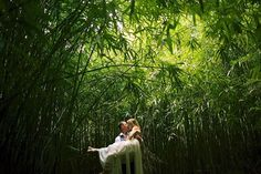 """Lost in the beauty of nature - Lost in the nature of love"" - Maui, Hawaii bamboo forest wedding photography by Anna Kim Photography"