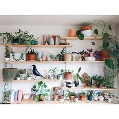 Blog planB par morganours/DIY, deco et lifestyle / du tissage, des plantes et puis la suite... ✉️ morganefrimane@gmail.com morganefrimane Toulouse